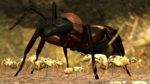 Ant Simulator cancelled